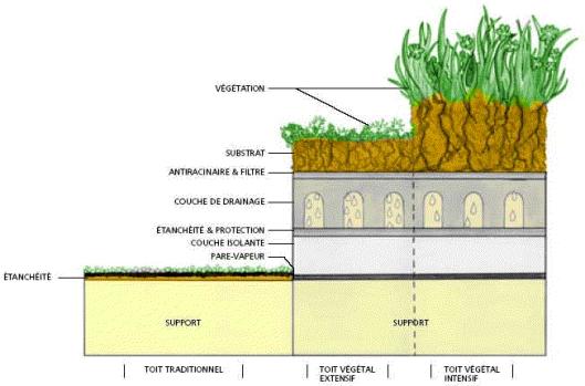 Les toits verts un concept qui fleurit grande chelle envi2bio - Toiture vegetalisee extensive ...