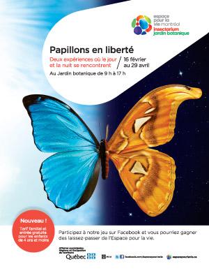 Papillons en libert jardin botanique envi2bio for Jardin botanique montreal papillons 2016