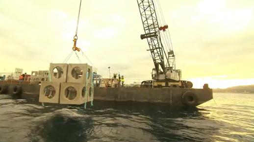 Les récifs artificiels : une pratique qui tend à se multiplier au fond de nos mers et océans
