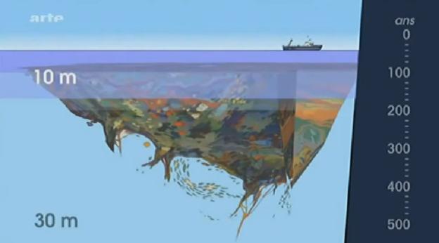 Pollution: tout savoir sur les continents de plastique  (1/6)