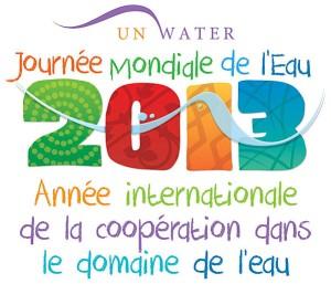 logo-2013-annee-eau