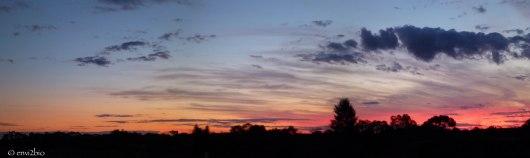bush-autralia-sunset-envi2bio